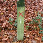 Teggs Nose Orienteering Post