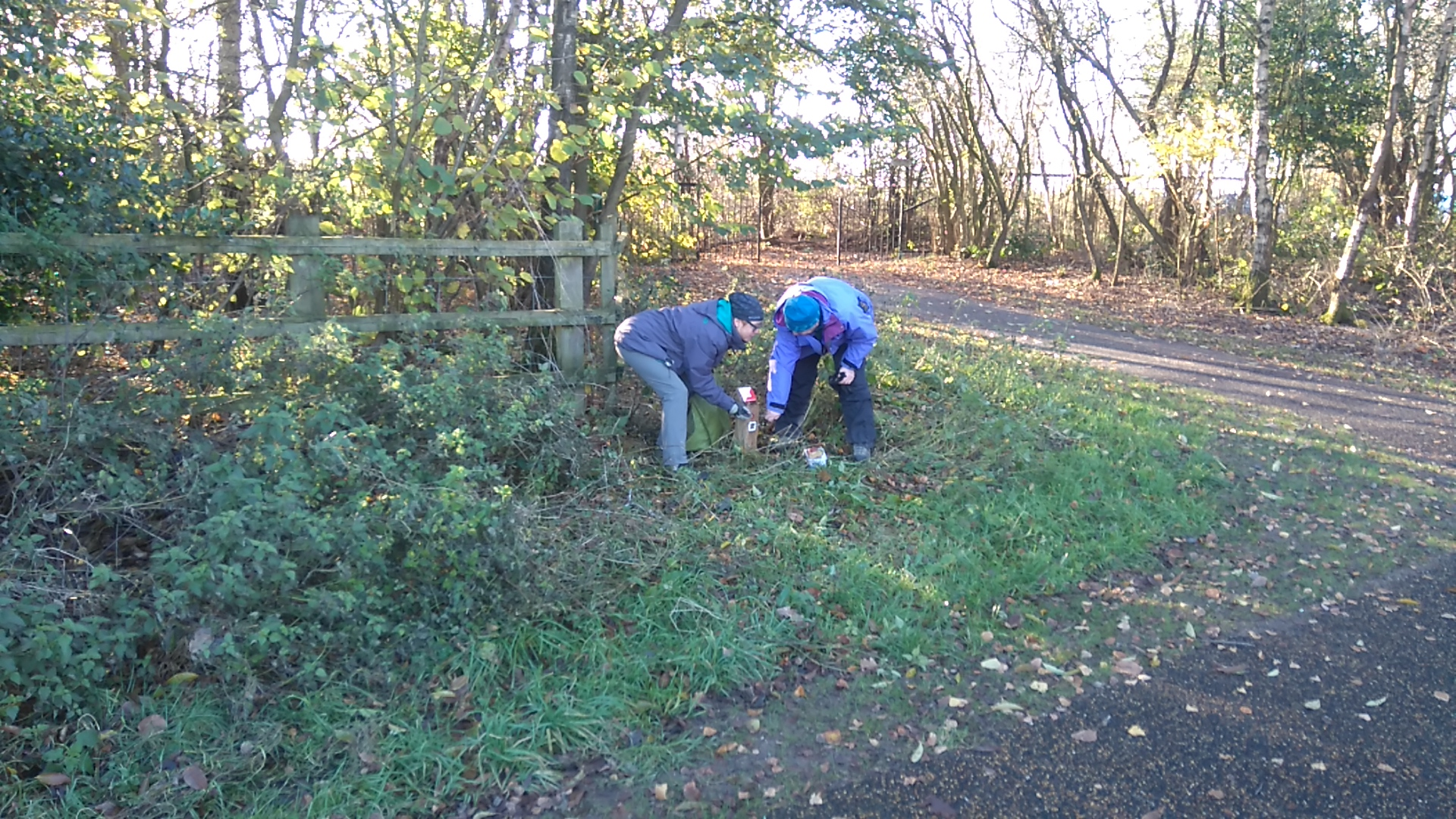 Working party restoring Blackleach orienteering course