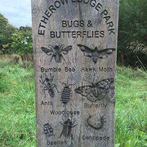 bugs-ethw