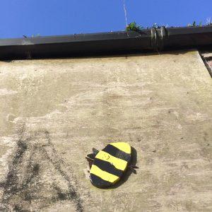 moss-bank-bee-w