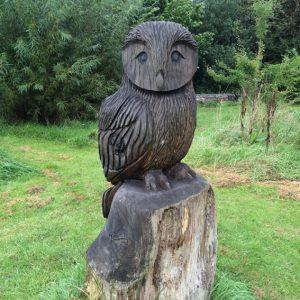 sad-owl-ethw